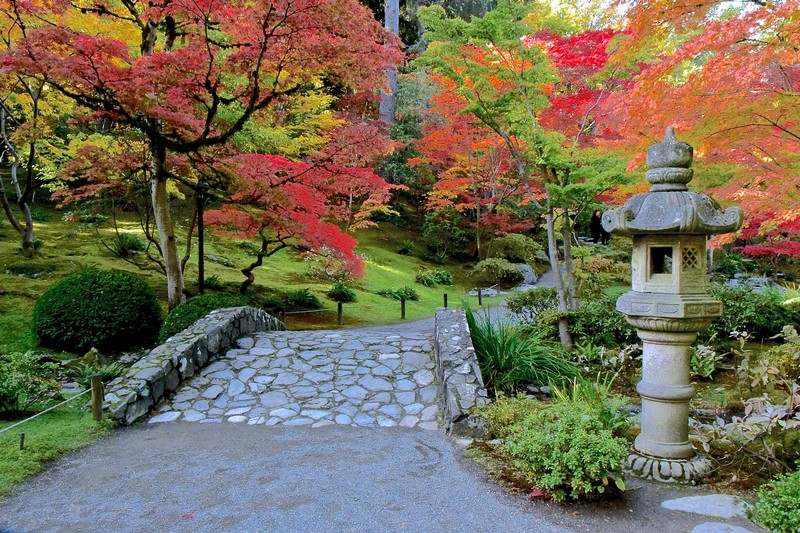 stone bridge and lantern with trees in fall color
