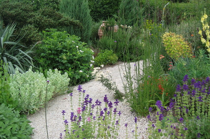 gravel pathway lined with Mediterranean plants
